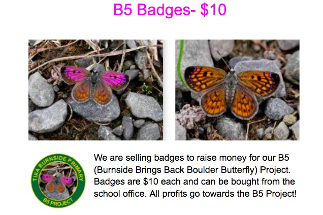 Badges for the Boulder Copper Butterfly